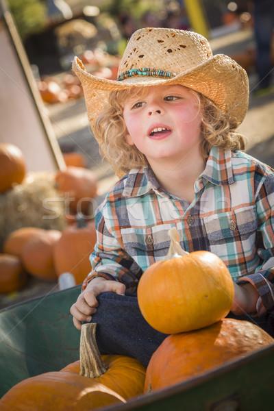 Pequeno menino chapéu de cowboy abóbora adorável Foto stock © feverpitch
