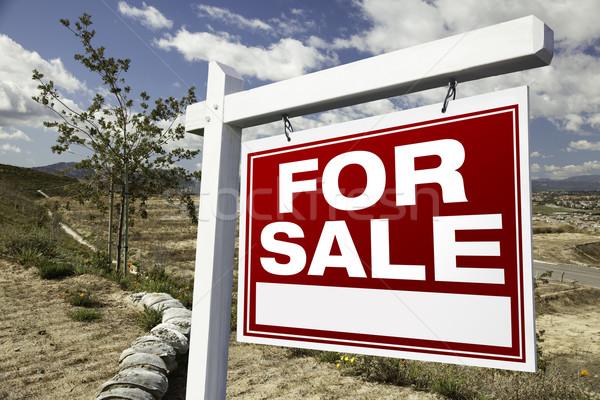 Photo stock: Vente · immobilier · signe · construction · prêt · propre