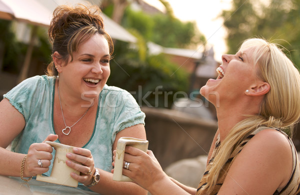 Girlfriends Enjoy A Conversation Stock photo © feverpitch
