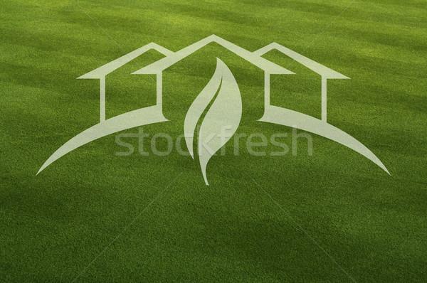 теплица свежие Cut трава лист мира Сток-фото © feverpitch