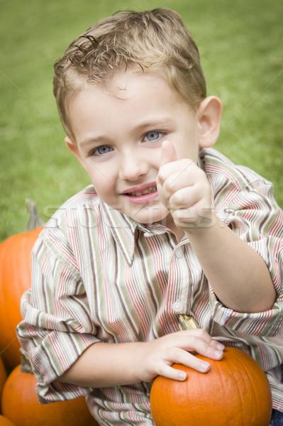 Aranyos fiatal gyermek fiú élvezi sütőtök Stock fotó © feverpitch