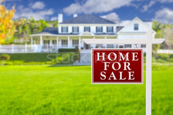 Casa venda assinar imóveis belo Foto stock © feverpitch