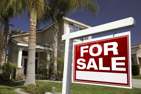 For Sale Real Estate Sign and House Stock photo © feverpitch