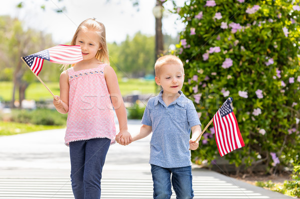 Young Sister and Brother Waving American Flags At The Park Stock photo © feverpitch