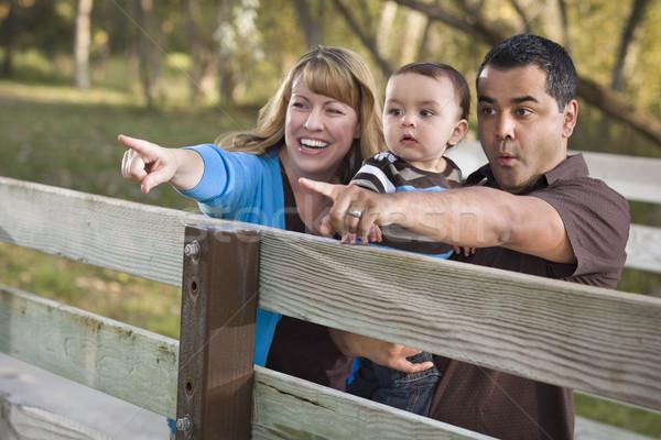 Stockfoto: Gelukkig · halfbloed · familie · spelen · park · etnische