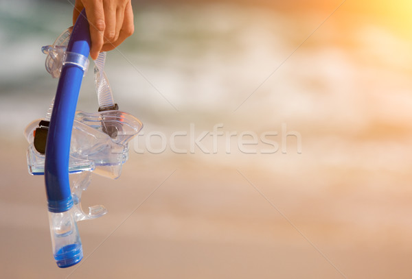 Woman Holding Snorkeling Gear Stock photo © feverpitch