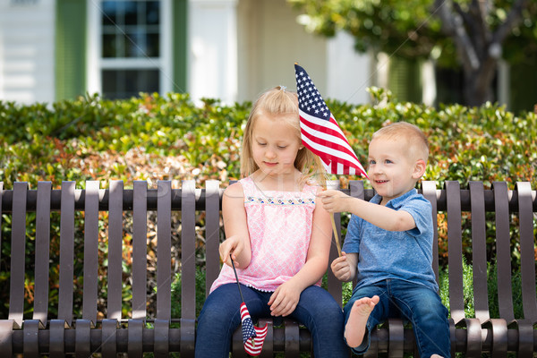 Young Sister and Brother Comparing Each Others American Flag Siz Stock photo © feverpitch