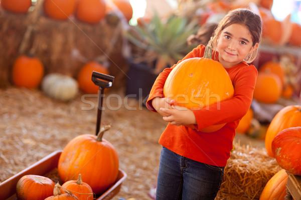 Cute Girl Choosing A Pumpkin Stock photo © feverpitch