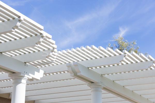 Hermosa casa patio cubrir cielo azul construcción Foto stock © feverpitch