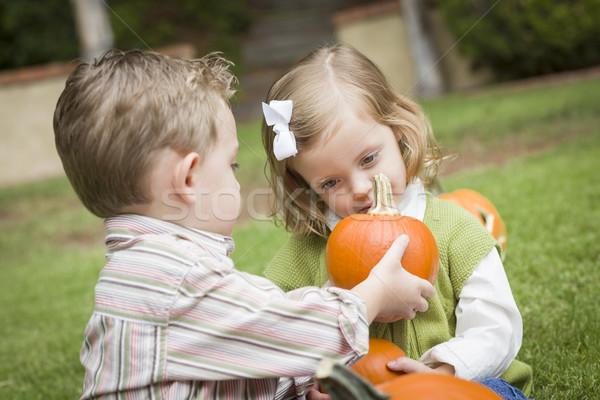 Сток-фото: Cute · молодые · брат · сестра · тыква