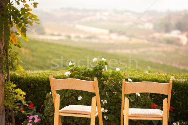 Patio stoelen land loof bloemen boom Stockfoto © feverpitch