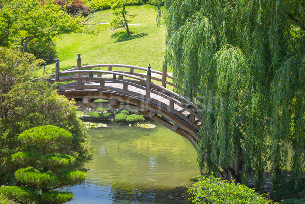 Beautiful Japanese Garden with Pond and Bridge. Stock photo © feverpitch