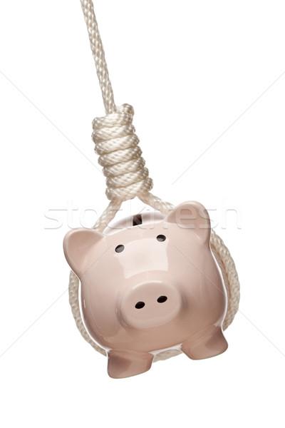 Stock photo: Piggy Bank Hanging in Hangman's Noose on White
