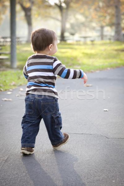 Fiatal baba fiú sétál park boldog Stock fotó © feverpitch