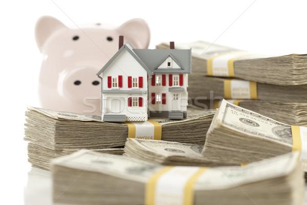 небольшой дома Piggy Bank деньги сто Сток-фото © feverpitch