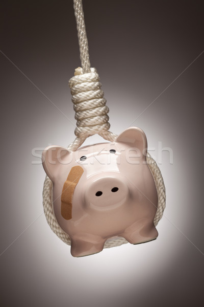 Piggy Bank with Bandage Hanging in Hangman's Noose Stock photo © feverpitch