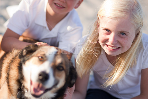 Cure Girl Playing with Her Dog Outside Stock photo © feverpitch
