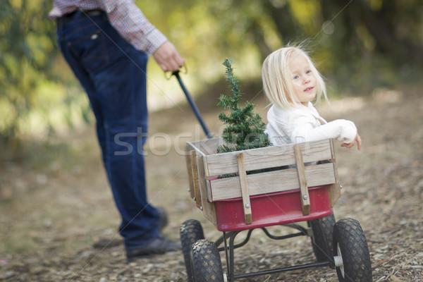 Vader kerstboom liefhebbend buitenshuis Stockfoto © feverpitch