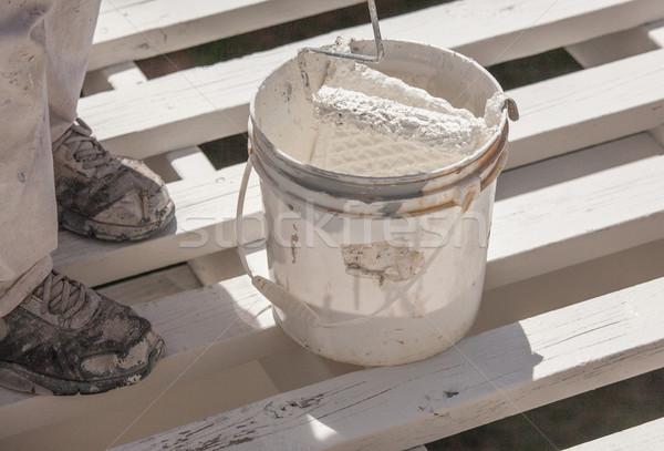Profissional pintor branco pintar topo casa Foto stock © feverpitch