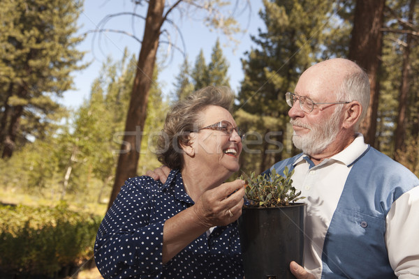 Attractive Senior Couple Overlooking Potted Plants Stock photo © feverpitch