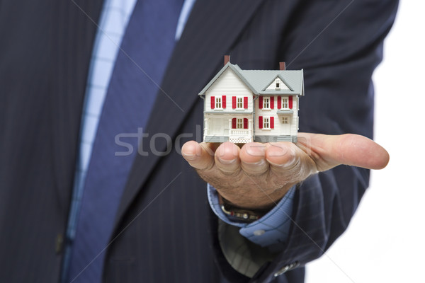 Homme agent immobilier miniature maison Palm Photo stock © feverpitch