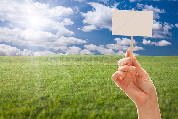 Blank Sign in Hand Over Grass Field and Sky Stock photo © feverpitch
