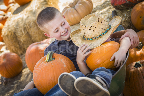 Two Little Boys Playing in Wheelbarrow at the Pumpkin Patch Stock photo © feverpitch