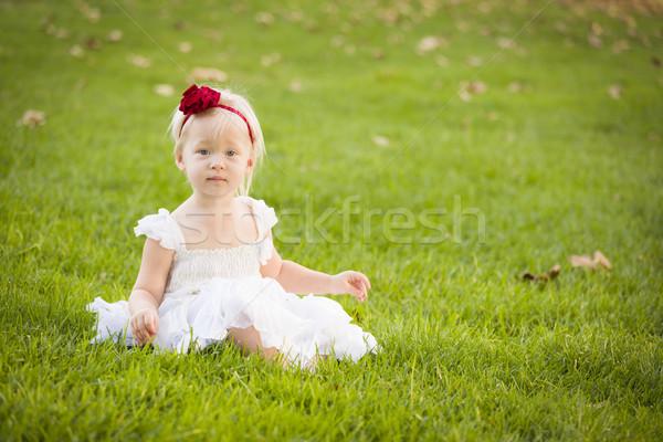 прелестный девочку белое платье травой поле красивой Сток-фото © feverpitch