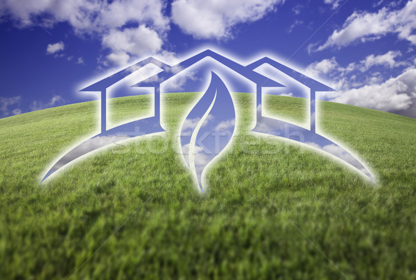 теплица свежие трава небе зеленая трава Blue Sky Сток-фото © feverpitch