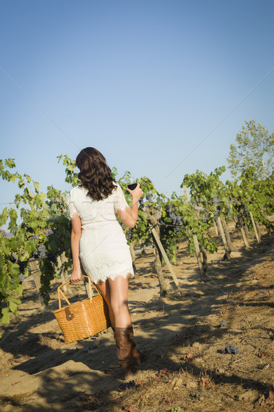Young Woman Enjoying A Walk and Wine in Vineyard Stock photo © feverpitch