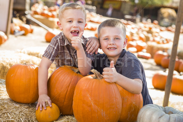 Two Boys at the Pumpkin Patch with Thumbs Up Stock photo © feverpitch