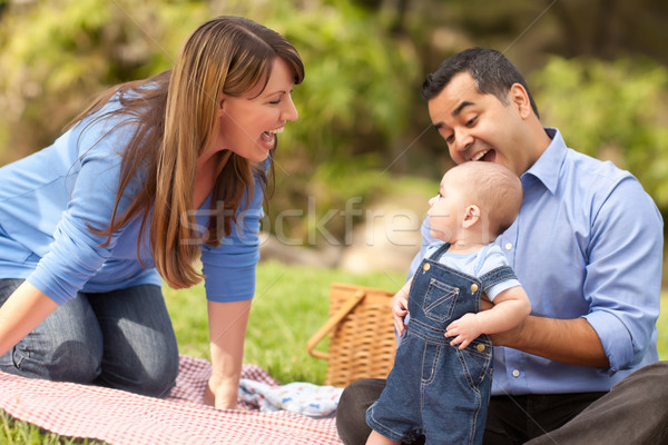 Stock foto: Glücklich · Familie · spielen · Park · Picknick