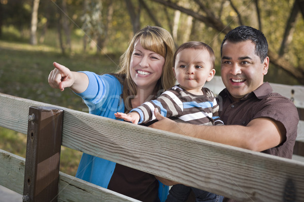 Foto stock: Feliz · família · jogar · parque · étnico