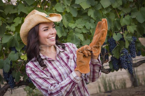 Vrouwelijke cowboyhoed handschoenen wijngaard Stockfoto © feverpitch