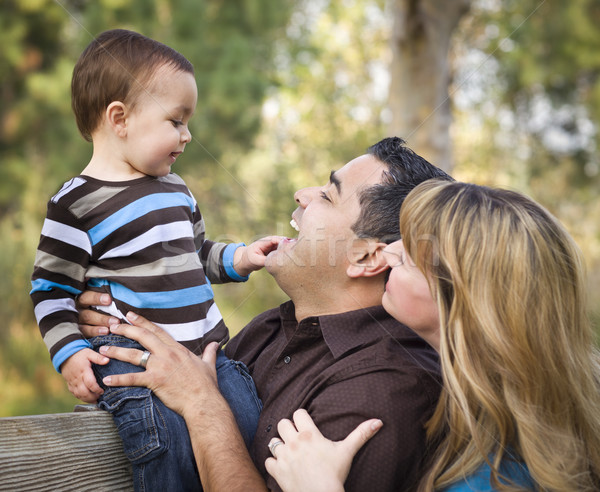 Zdjęcia stock: Szczęśliwy · etnicznych · rodziny · gry · parku