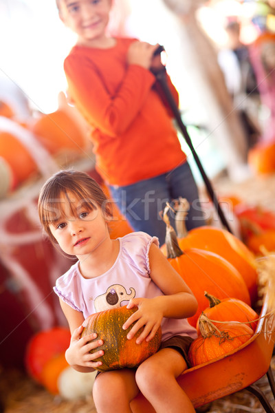 Cute Girl Riding Wagon with Her Pumpkin and Sister Stock photo © feverpitch