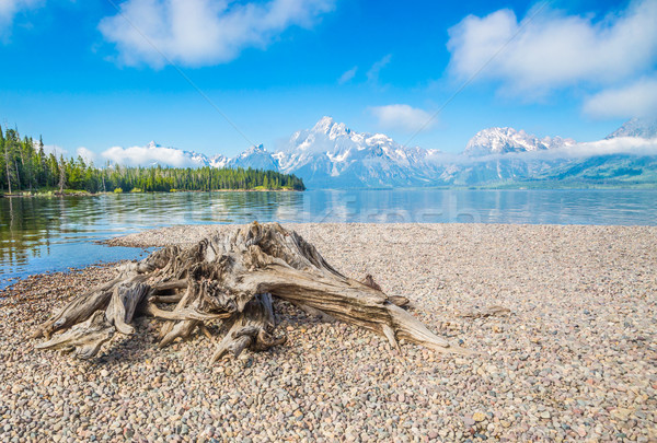Grand Teton National Park Mountain Range in Wyoming, USA. Stock photo © feverpitch