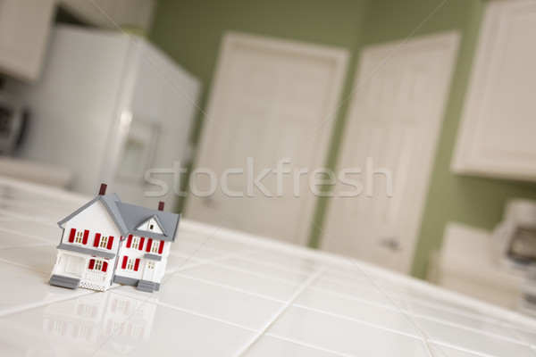 Small Model Home on Kitchen Counter of House Stock photo © feverpitch
