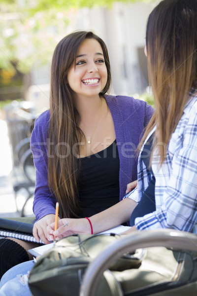 Expressive Young Mixed Race Female Sitting and Talking with Girl Stock photo © feverpitch