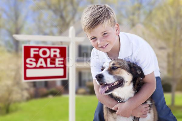 犬 販売 にログイン 家 幸せ ストックフォト © feverpitch