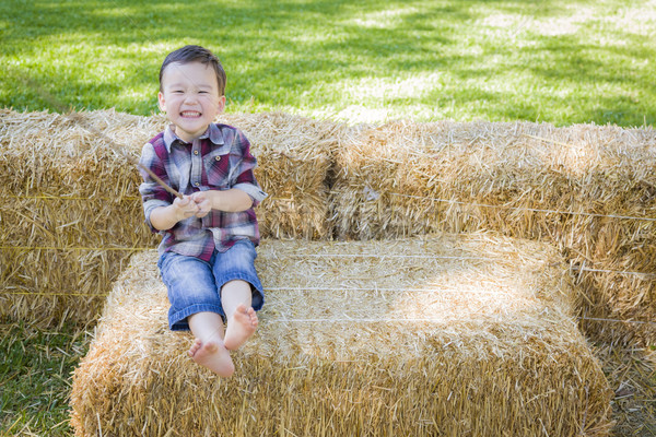 Cute Young Mixed Race Boy Having Fun on Hay Bale Stock photo © feverpitch