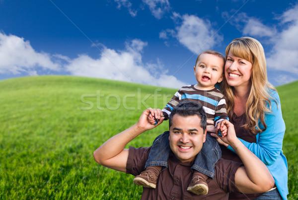 Aile yeşil ot alan mutlu bulutlar Stok fotoğraf © feverpitch