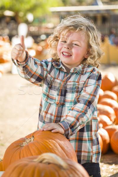 Aranyos kicsi fiú remek sütőtök folt Stock fotó © feverpitch
