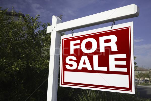 Vente immobilier signe nuages bleu Photo stock © feverpitch