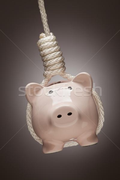 Piggy Bank Hanging in Hangman's Noose Stock photo © feverpitch