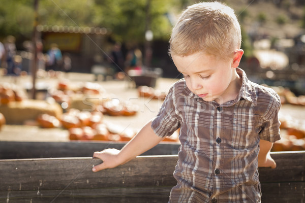 Sad Boy at Pumpkin Patch Farm Standing Against Wood Wagon Stock photo © feverpitch
