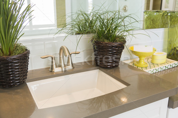 New Modern Bathroom Sink, Faucet, Subway Tiles and Counter  Stock photo © feverpitch