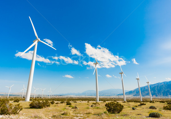 Dramatic Wind Turbine Farm in the Desert of California. Stock photo © feverpitch