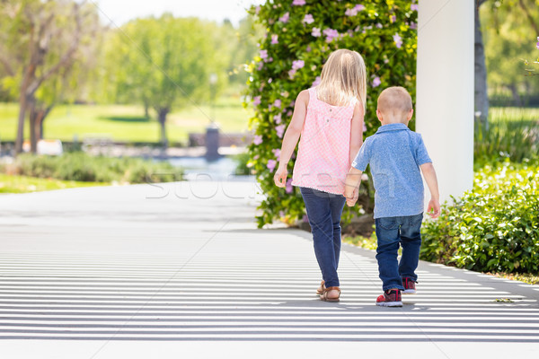 Young Sister and Brother Holding Hands And Walking At The Park Stock photo © feverpitch