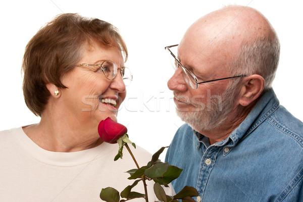 Szczęśliwy starszy mąż czerwona róża żona odizolowany Zdjęcia stock © feverpitch